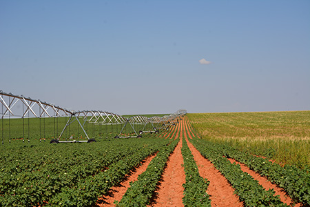 SINGLE LEG TOWER IRRIGATION